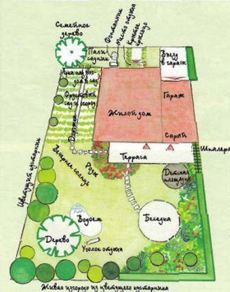 планировании сада посадки